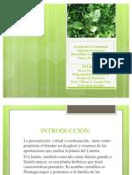presentacion llanten jmpn (2)