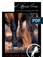 Curso de Natural Horse Care en Cataluña