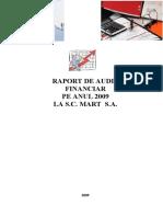 Raport Audit-Proiect Final