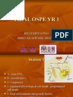 OSPE Trial Yr1 Selanjar2
