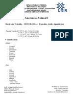 Roteiro OSTEOLOGIA