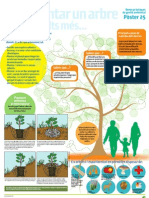 Pòster25 Com plantar un arbre o dos o molts mes...
