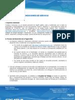 CONDICIONES DE SERVICIO - 2011