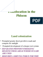 6-Translocation in the Phloem