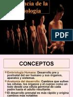 02 Importancia de la Embriología