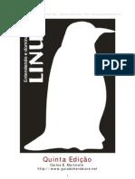 Entendendo e Dominando o Linux