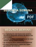 09 SEGUNDA SEMANA