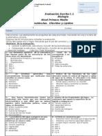 prueba 2  glucidos y lipidos  biologia 1°medio