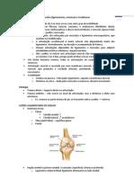 Lesões ligamentares, tendinosas e meniscais