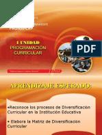 pronafcap-diseño-programacion