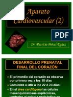 30 Aparato Cardiovascular (2). Ppt