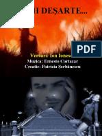 ILUZII DESARTE-1