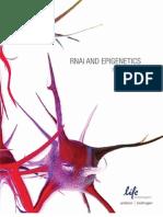 RNAi and Epigenetics Source Book