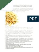 A aveia é um dos cereais mais consumidos há muito tempo