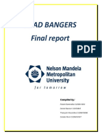 HEAD BANGERS Project for 2011 Final Report