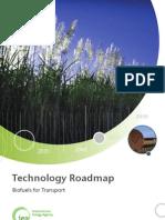* IEA Biofuels Roadmap