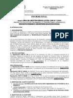 Auditoria SAS 2007