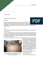 protocolomicosis