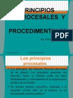 Principios Procesales y Procedimentales