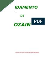 FUNDAMENTO OZAIN