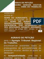 AGRAVO DE PETICAO