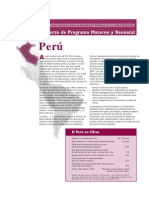 Peru_MNPI