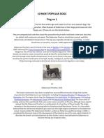 10 MOST POPULAR DOGS Doberman Pinscher