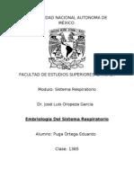 Embriología Del Sistema Respiratorio