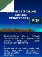 Anatomi Fisiologi Sistem an