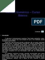 Cálculo Numérico – Curso Básico