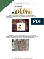 Evolução dos Meios de Comunicação - Paulo Silva