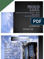 Socializacion Proyecto CURO