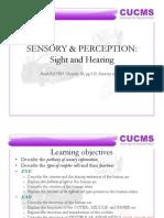 Sensory and Perception (Sight and Hearing) 7-3-11