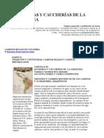 QUINERÍAS Y CAUCHERÍAS DE LA AMAZONIA