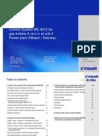 Mauell Field Report Altbach