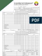 Planilla Oficial de Juego Conajuzfutsal 2011- 10 Faltas Acumulativas - Hmh