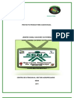 Propuesta Final Sena Product or A Audiovisual 1