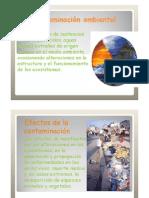 contaminaciondelmedioambientepowerpoint-100904103248-phpapp01