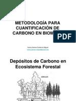 METODOLOGÍA PARA CUANTIFICACIÓN DE CARBONO EN BIOMASA