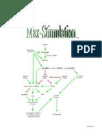 Max Stimulation