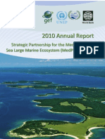 2010 MedPartnership Annual Report