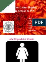 Kanker Leher Rahim Papsmear IVA
