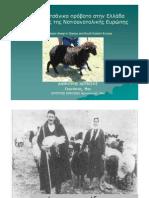 53202583-Το-Σαρακατσανικο-προβατο-στην-Ελλαδα-και-σε-χορες-της-Νοτιοανατολικης-Ευρωπης