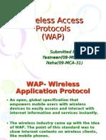 Wireless Access Protocols