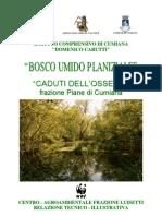 Bosco umido planiziale Caduti dell'Ossezia - Copertina relazione