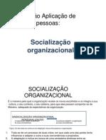 2010-1-socializacao-organizacional