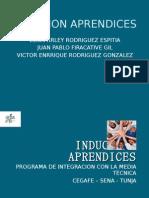 INDUCCIÓN APRENDICES 2011
