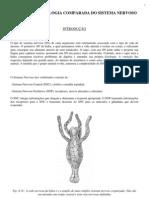Anatomia e Fisiologia Comparada Do Sistema Nervoso