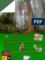 2388150-Dasardasar-Ekologi