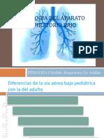 Semiologia Del Aparato Respiratorio Bajoultima